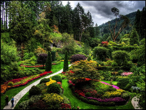 Amazing Gardens with Figures from Plants 11