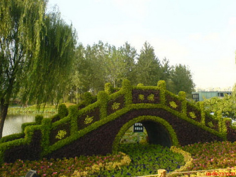 Amazing Gardens with Figures from Plants 6