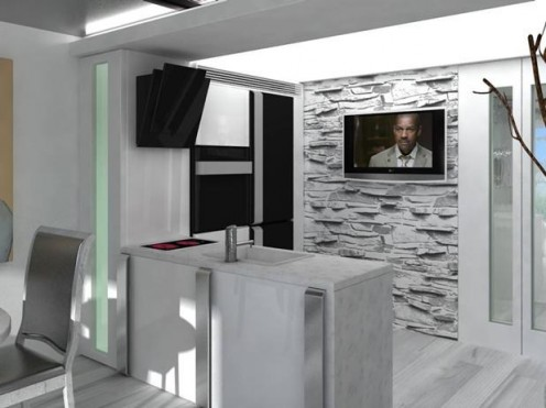 Artistic White Apartment with Black Accents 2