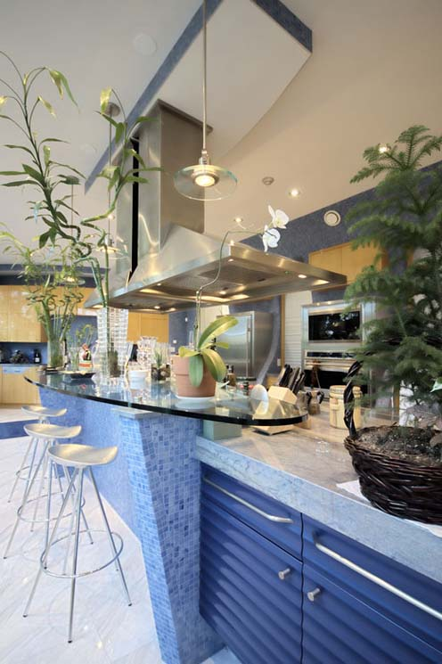 Mi Sueno - Contemporary Architectural Masterpiece-kitchen