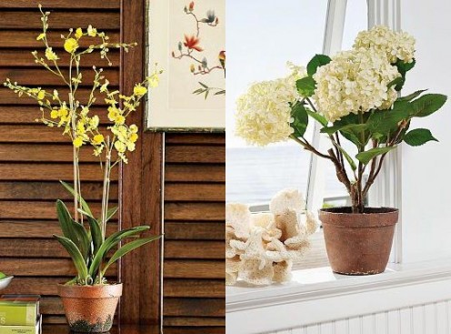 How to arrange flowers in the house?