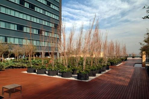 "Hotel Sheraton ""Centro Historico"" - Spa & Roof Garden - Roof"